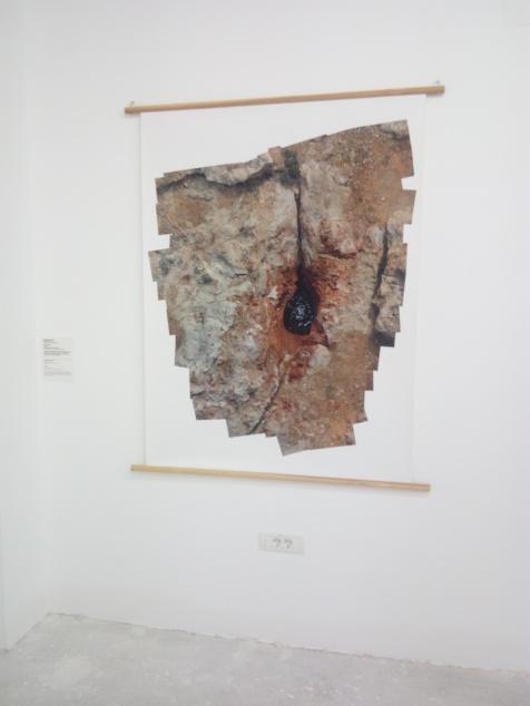 temisvar_01102017 (53)